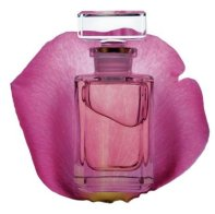 Aveda Rose Attar Pure Fume fragrance