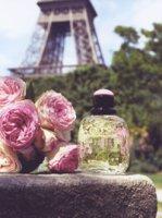 Yves Saint Laurent Paris Jardins Romantiques perfume