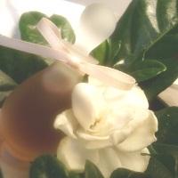 Ayala Moriel Gigi fragrance