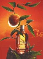 L'Occitane Feu d'Orange perfume