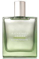 Bath & Body Works Rainkissed Leaves perfume