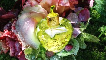 Lolita Lempicka Forbidden Flower fragrance