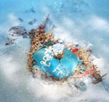 Lolita Lempicka Coral Flower