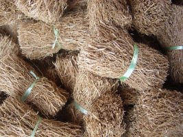 Vetiver Root Bundles