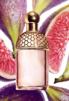 Guerlain Aqua Allegoria Figue Iris fragrance