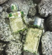 Reflets d'Eau de Rochas fragrances