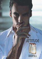 La Perla Grigioperla Attitude fragrance for men