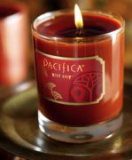 Pacifica Nile Lily candle