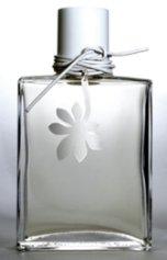 Wickle Chestnut & Vetiver fragrance