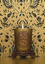 Diptyque Oponanax Bronze fragrance candle