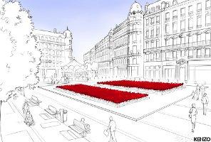 Kenzo poppies in Lyon