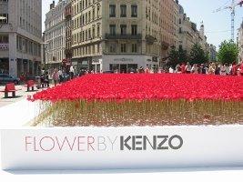 Kenzo poppies in Lyon, 1