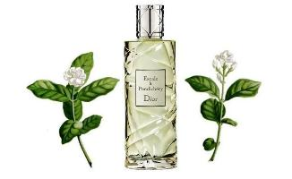 Dior Escale a Pondichery fragrance