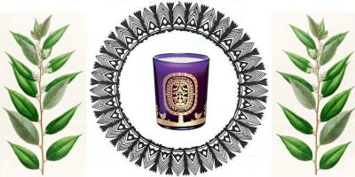Diptyque Benjoin Holiday Candle