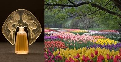 Making Scents: The Art and Passion of Fragrance at Longwood Gardens