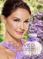 American Beauty Beloved Purple Blossom