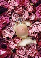 Les Parfums de Rosine Une Folie