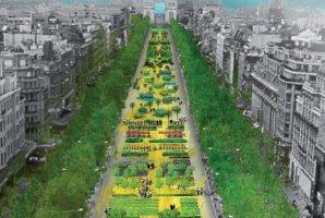 Intl Biodiversity Day in Paris