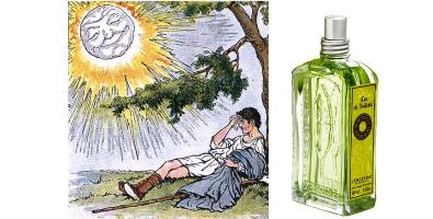 L'Occitane Verbena Summer Secret