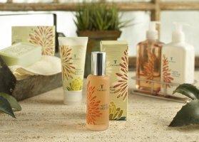 Thymes Agave Nectar fragrance
