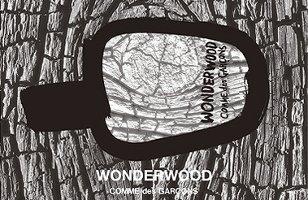 Comme des Garçons Wonderwood fragrance advert
