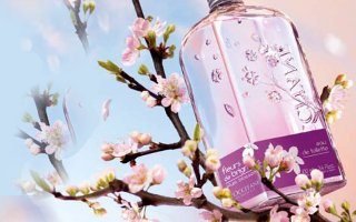 L'Occitane Plum Blossom