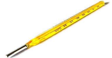 Banned Mercury-in-Glass Thermometer