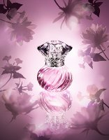 Jill Stuart Night Jewel Summer Bloom perfume
