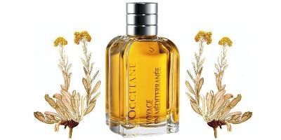 L'Occitane Immortelle de Corse