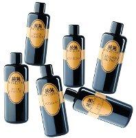 Phaedon perfumes