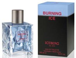 Iceberg Burning Ice