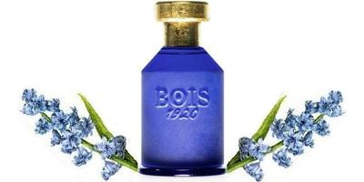Bois 1920 Oltremare
