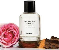 Laboratorio Olfattivo Rosamunda fragrance