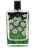 Nest Fragrances White Narcisse