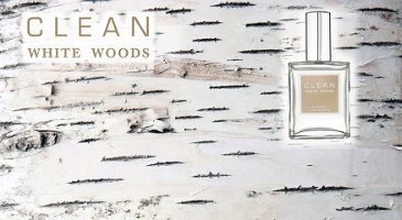 Clean White Woods banner