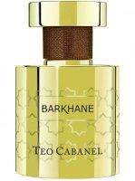 Teo Cabanel Barkhane