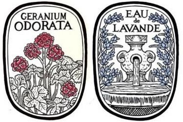 Diptyque Eau de Lavande and Geranium Odorata, labels