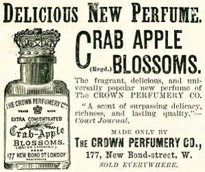 crown-advert