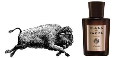 Buffalo + Acqua di Parma Colonia Leather