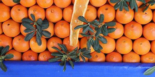 oranges + blue