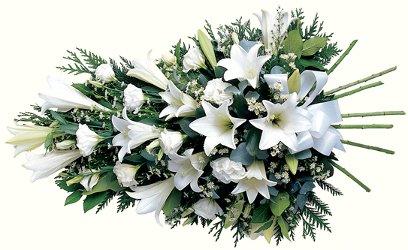 Funeral sheath