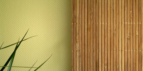plant, wall, screen