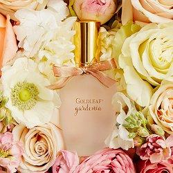 Thymes Goldleaf Gardenia