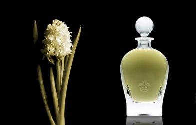 Eric Buterbaugh Apollo Hyacinth