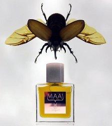 Bogue Maai brand image 2