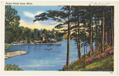 Sluice Pond, Lynn, Mass