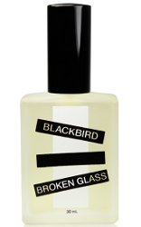 Blackbird Broken Glass