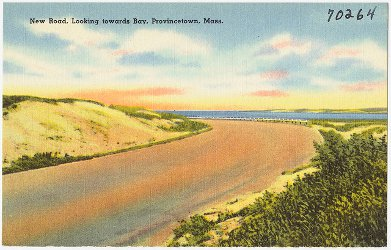 New road, looking towards bay, Provincetown, Mass