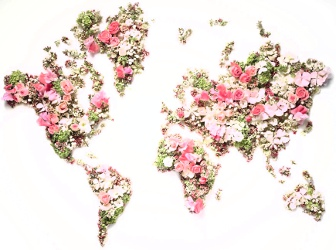 Dior world flower map