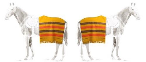 Hermès wool horse rugs